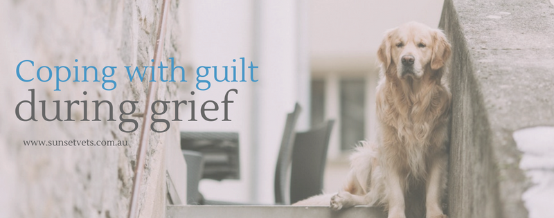 Coping with Guilt during Grief