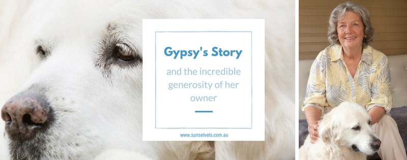 Gypsy's story