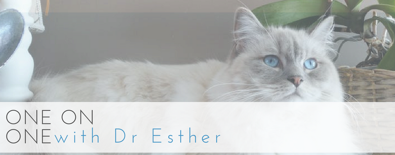 Q & A with Dr Esther