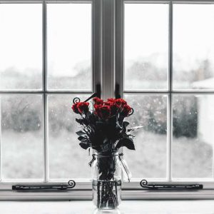 111-flowers-in-front-of-window